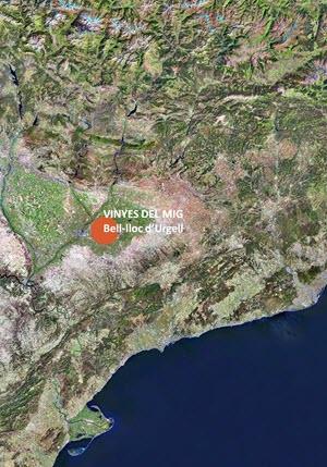 VINYES DEL MIG · Bell·lloc d'Urgell